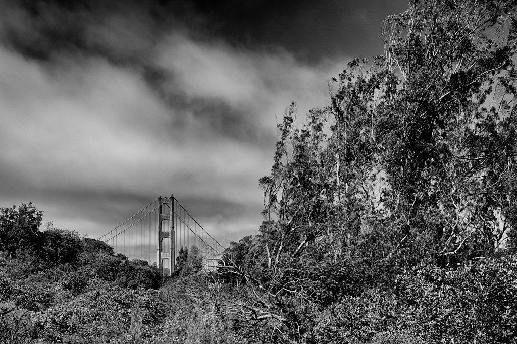 San Francisco   |   California/USA   |   2016